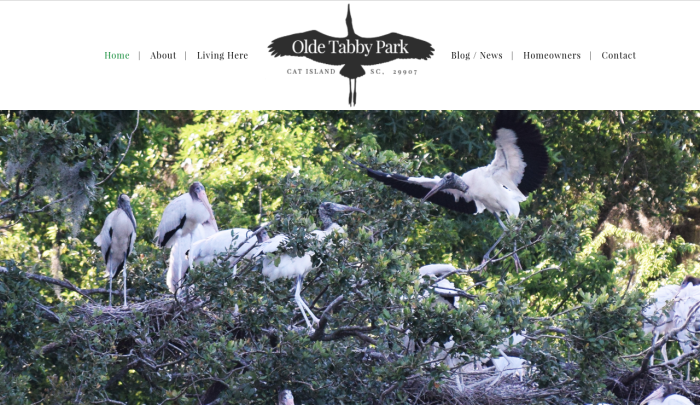 Olde Tabby Park : Cat Island, SC Community | PickleJuice Productions